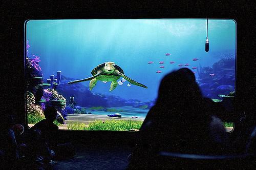 Turtle talk 2.jpg