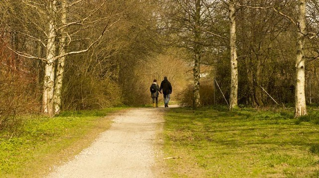 Walking4.jpg